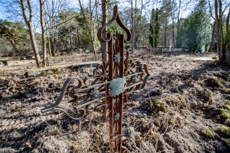 Pirita kalmistu korrastustööd