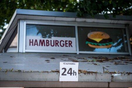 Pealinna burgeriputkad