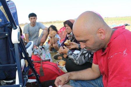 Serbia-Ungari piir. Sisserändajad tulevad järjest üle piiri