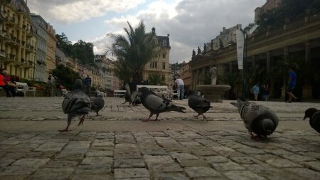Tšehhi, Karlovy Vary