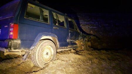 Metssea põhjustatud liiklusõnnetus Rõhu külas