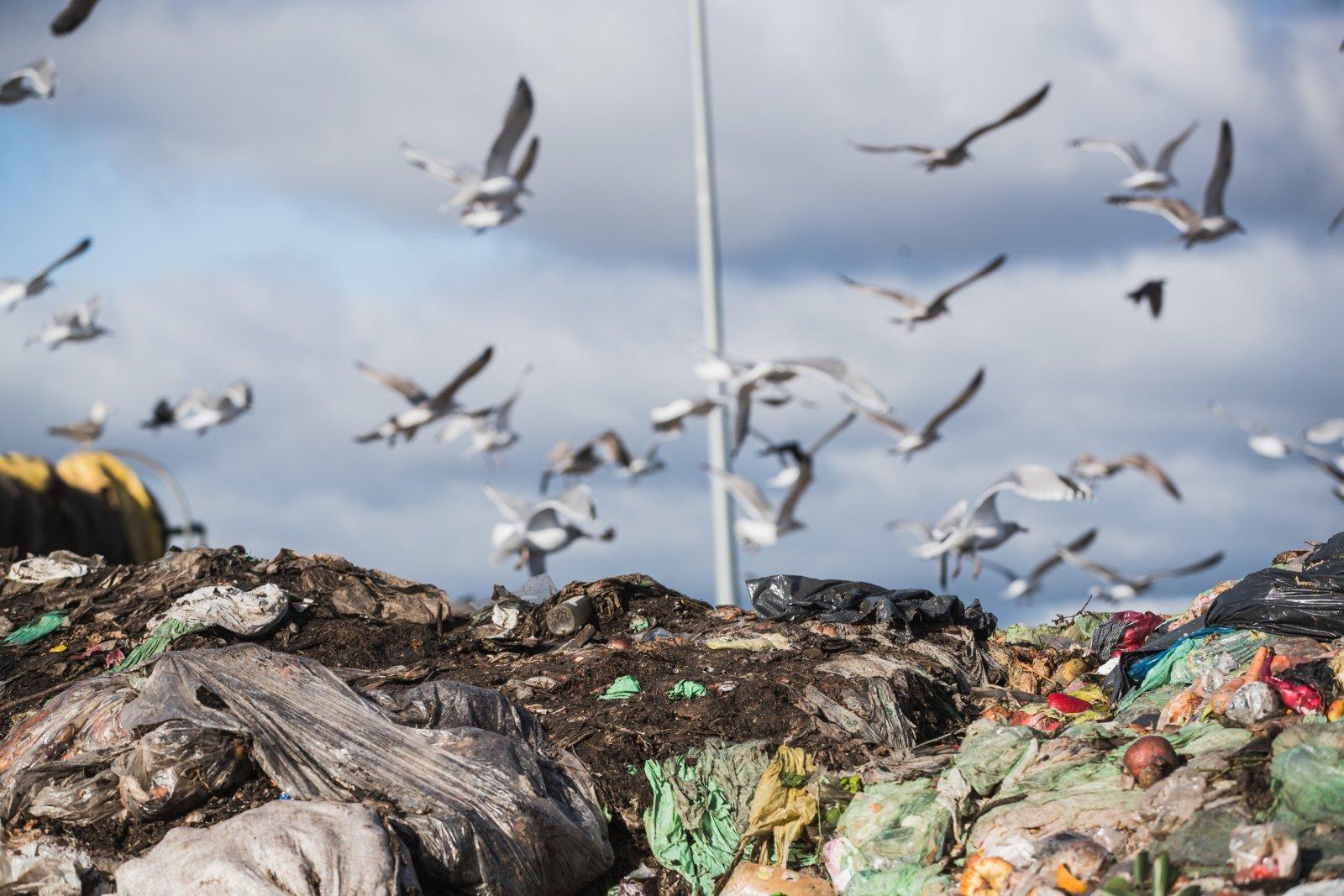 Keskkonnaamet võtab teravdatud tähelepanu alla prügilates ladestatavate jäätmete kvaliteedi: